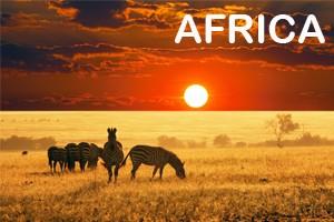 Viaggi in Africa