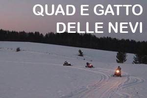 Quad e Gatto delle nevi