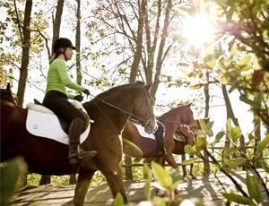 Sport e Giochi Incentive drivEvent Equitazione