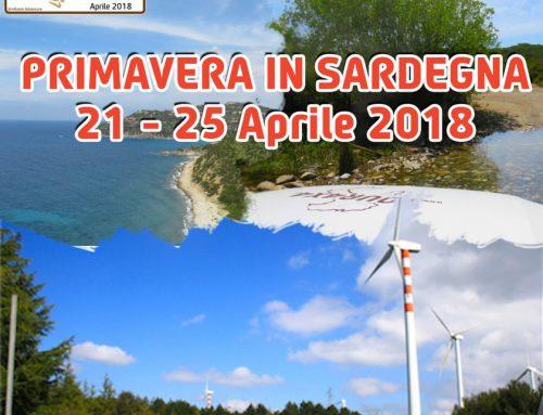 Dal 21 al 25 Aprile Tour4x4 sarà in Sardegna, online le info del viaggio di Primavera
