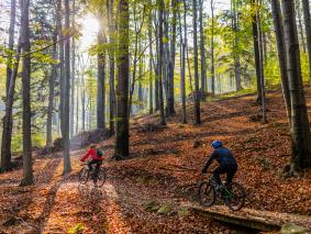 Vacanza in Garfagnana e Toscana EBike